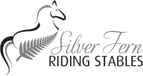 Silver fern riding stables